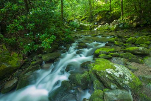 Roaring Fork River「Roaring fork, Great Smoky Mountains」:スマホ壁紙(19)
