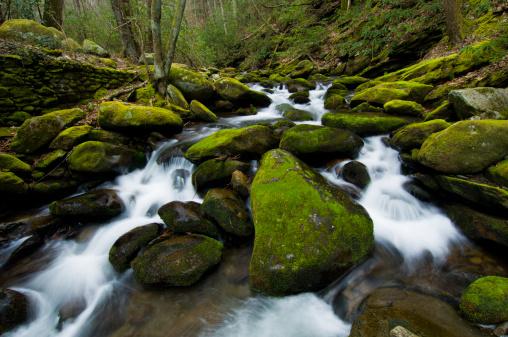 Roaring Fork River「Roaring Fork River moss covered rocks」:スマホ壁紙(12)