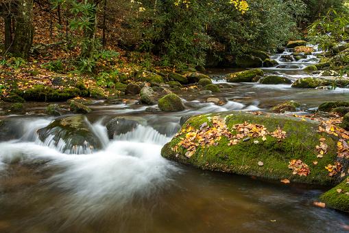 Roaring Fork River「Roaring Fork, Smoky Mountain National Park」:スマホ壁紙(11)