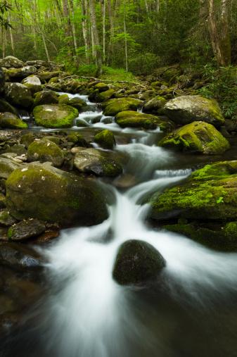 Roaring Fork River「Roaring Fork River cascades in Spring.」:スマホ壁紙(18)
