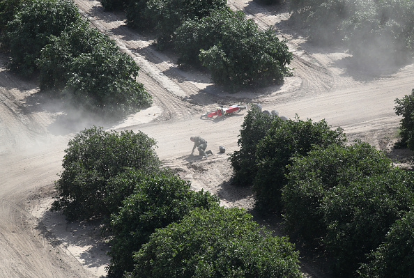 Grove「CBP Conducts Helicopter Patrols Of U.S. - Mexican Border」:写真・画像(7)[壁紙.com]
