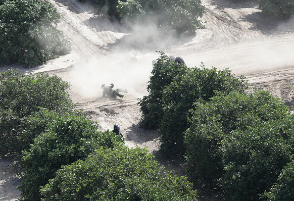 Grove「CBP Conducts Helicopter Patrols Of U.S. - Mexican Border」:写真・画像(8)[壁紙.com]