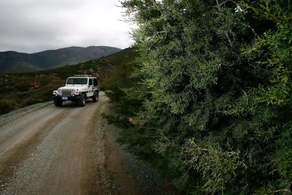 Wilderness Area「US Waives Laws To Accelerate Completion Of Border Fence」:写真・画像(14)[壁紙.com]