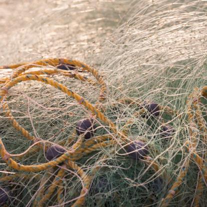 Sayulita「A Rope Entwined In Fishing Net」:スマホ壁紙(7)