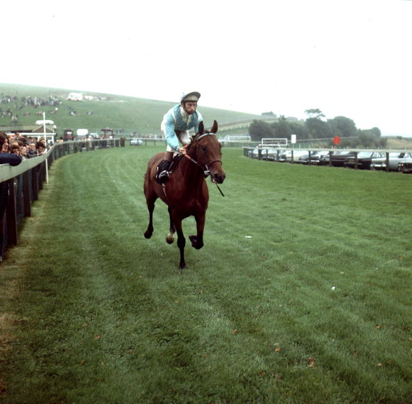 Sports Track「Piggott At Goodwood」:写真・画像(8)[壁紙.com]