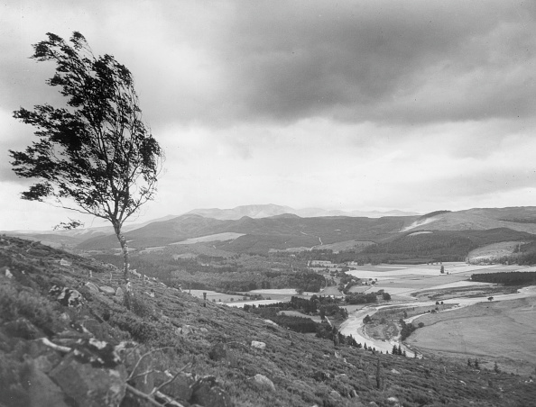 Monty Fresco「Deeside Valley」:写真・画像(11)[壁紙.com]