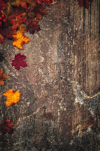 月「秋の装飾を背景に Leafs」:スマホ壁紙(14)