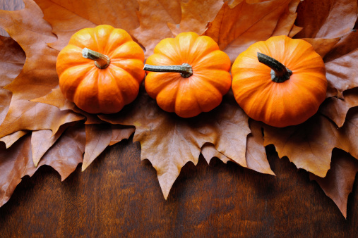 chestnut「Autumn decoration」:スマホ壁紙(16)