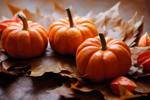 栗「秋の装飾」:スマホ壁紙(19)