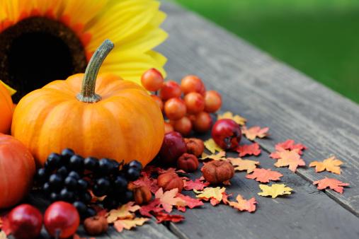 栗「秋の装飾」:スマホ壁紙(18)