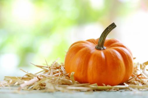 ハロウィン「秋の装飾」:スマホ壁紙(19)