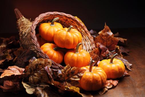 Cornucopia「Autumn decoration」:スマホ壁紙(18)