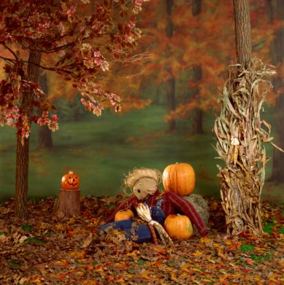 ハロウィン「Autumn decorations」:スマホ壁紙(13)