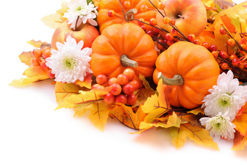 Chinese Lantern「Autumn decoration on white with copy space」:スマホ壁紙(6)