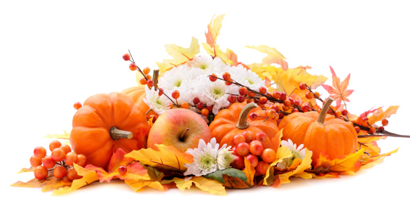 chestnut「Autumn decoration on white with copy space」:スマホ壁紙(4)