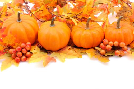 栗「秋の装飾でホワイト、コピースペース付き」:スマホ壁紙(9)