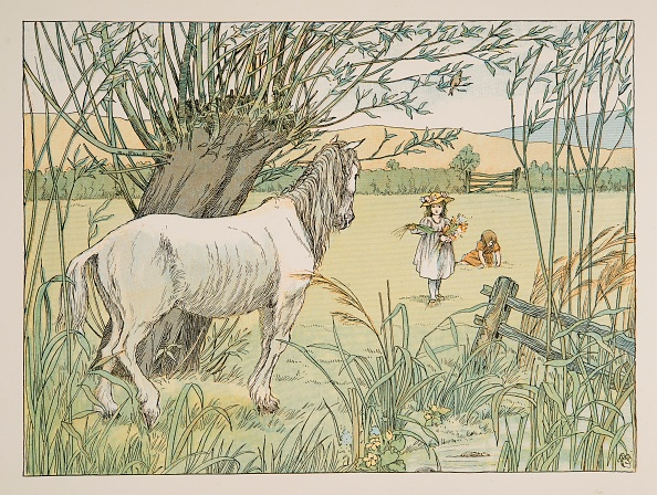 Picture Book「The Old Bus Horse」:写真・画像(3)[壁紙.com]