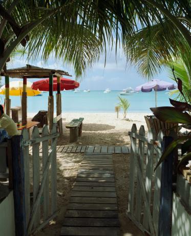 Frond「Anguilla, walkway towards beach」:スマホ壁紙(7)