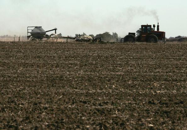 Canola「Victorian Farmers Battle Drought Conditions」:写真・画像(17)[壁紙.com]