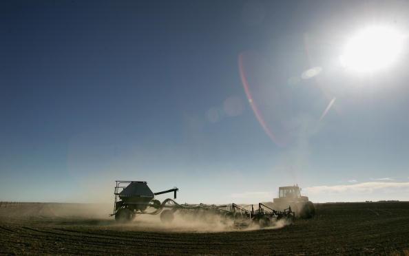 Canola「Victorian Farmers Battle Drought Conditions」:写真・画像(14)[壁紙.com]