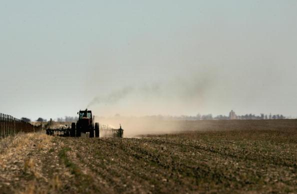 Canola「Victorian Farmers Battle Drought Conditions」:写真・画像(16)[壁紙.com]