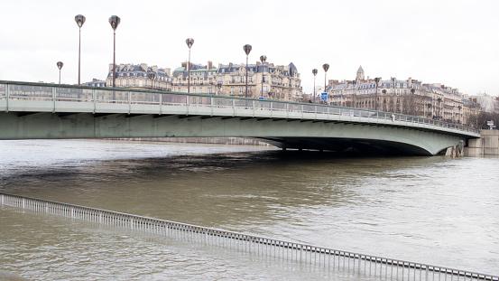 Growth「flood in Paris, Zouave of the Alma Bridge」:スマホ壁紙(16)
