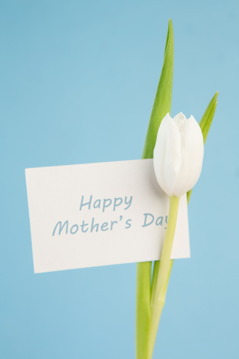 母の日「Beautiful white tulip with a happy mothers day card on a blue background」:スマホ壁紙(12)