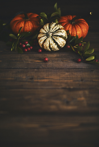 Miniature Pumpkin「Thanksgiving background with pumpkin variety and berries」:スマホ壁紙(17)