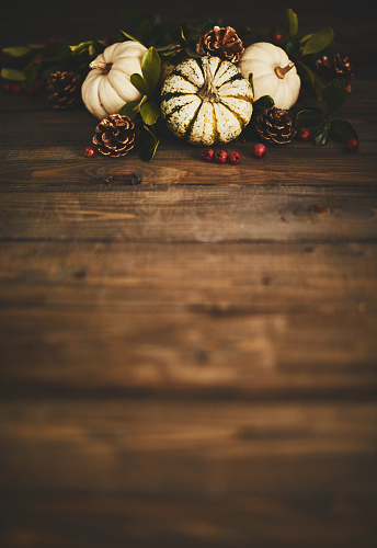 Pine Cone「Thanksgiving background with pumpkin variety and berries」:スマホ壁紙(1)