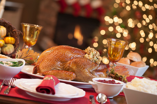 Turkey - Bird「Thanksgiving Turkey Dinner」:スマホ壁紙(19)