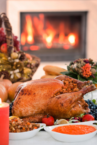 Stuffed Turkey「Thanksgiving dinner.」:スマホ壁紙(0)