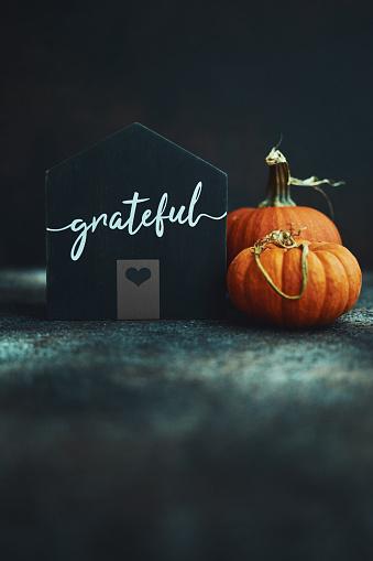 Conceptual Symbol「Thanksgiving still life with house and pumpkins」:スマホ壁紙(7)