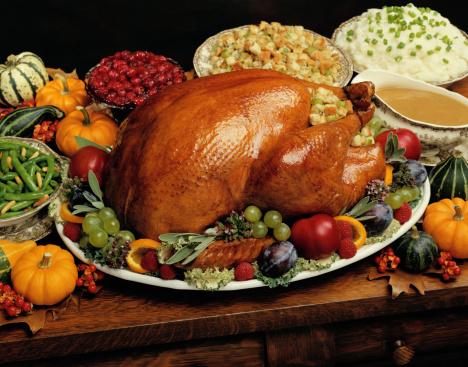 Stuffed Turkey「Thanksgiving Turkey」:スマホ壁紙(4)
