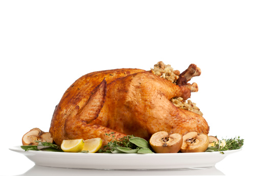 Thanksgiving「Thanksgiving Turkey」:スマホ壁紙(9)