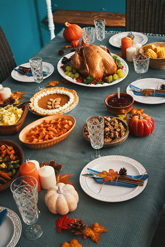 Turkey - Bird「Thanksgiving Party Table Setting Traditional Holiday Stuffed Turkey Dinner」:スマホ壁紙(14)