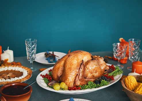 Turkey - Bird「Thanksgiving Party Table Setting Traditional Holiday Stuffed Turkey Dinner」:スマホ壁紙(11)