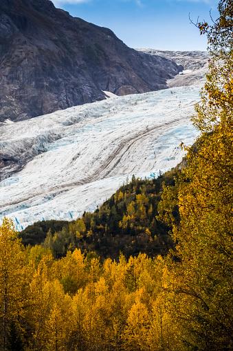 Exit Glacier「Exit Glacier surrounded by autumn coloured foliage, South-central Alaska near Seward」:スマホ壁紙(15)