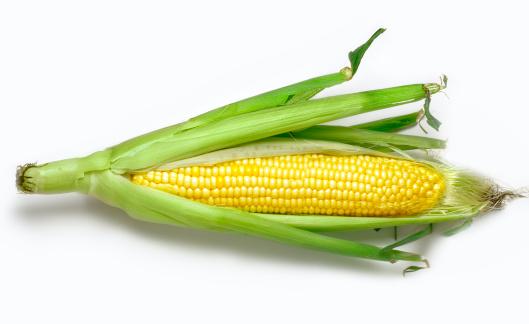 Freshness「Corn and husk」:スマホ壁紙(7)