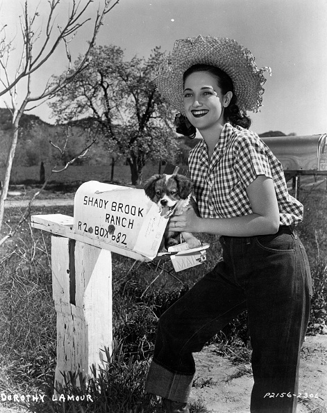 Straw Hat「Dorothy Lamour」:写真・画像(5)[壁紙.com]