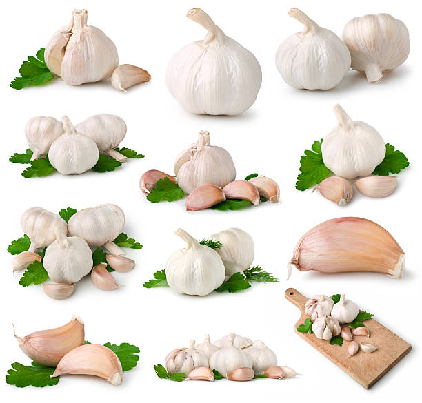 Garlic collection:スマホ壁紙(壁紙.com)