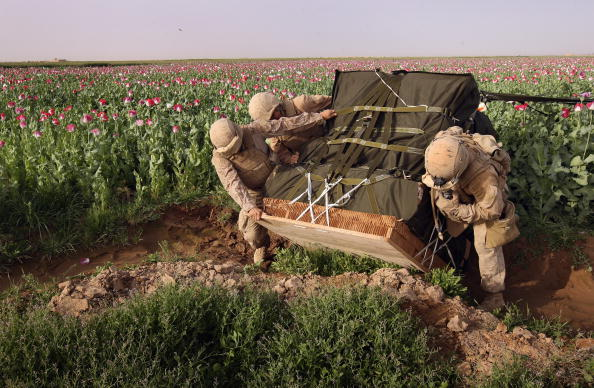 Opium「Airdrop Of Military Supplies Falls On To Opium Poppy Field」:写真・画像(19)[壁紙.com]