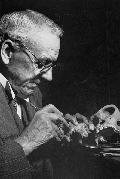 Paleontologist「Robert Broom (1866-1951) south african paleontologist who discovered skull of Australopithecus, 30's」:写真・画像(10)[壁紙.com]