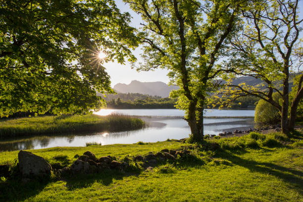 Elter Water and the Langdale Pikes, Elterwater, Lake District National Park, Cumbria, England, UK:スマホ壁紙(壁紙.com)