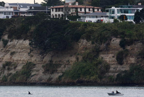 Killer Whale「Orca Whales Off St Heliers Bay In Auckland」:写真・画像(2)[壁紙.com]