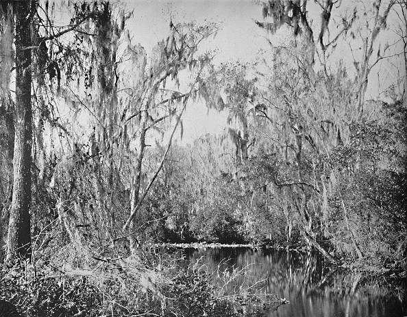 Water's Edge「On Governors Creek」:写真・画像(19)[壁紙.com]