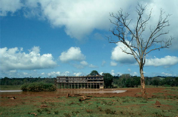 Copy Space「Treetops Safari Lodge, Kenya」:写真・画像(13)[壁紙.com]