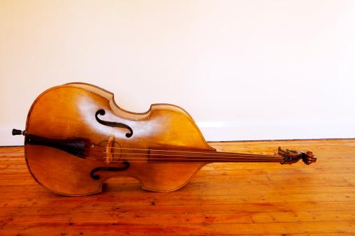 Bass Instrument「3/4 size double bass.」:スマホ壁紙(8)