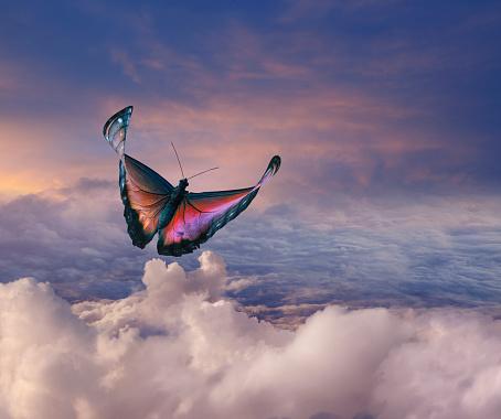 Carefree「Butterfly Flight Through Clouds」:スマホ壁紙(16)