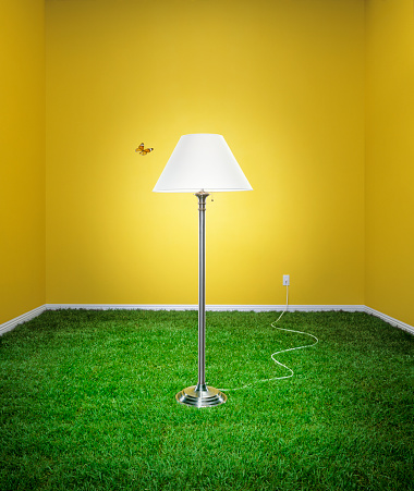 Corner「Butterfly flying past lamp in living room, grass covering floor」:スマホ壁紙(19)