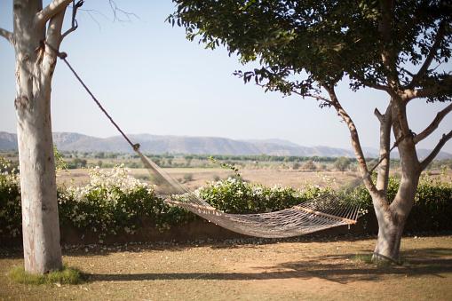 Rajasthan「Hammock in a garden」:スマホ壁紙(9)